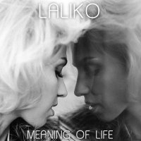 Meaning of Life (Single)