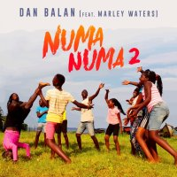 Numa Numa 2 (feat. Marley Waters) - Single